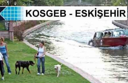 KOSGEB Eskişehir'de1 Müdürlük 1 Temsilciğe Sahiptir