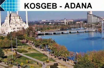 KOSGEB Adana'da 1 Müdürlük 2 Temsilcilik Kurmuştur