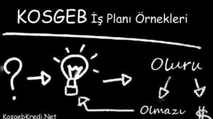 KOSGEB İş planı Örneği 2021 (ONAYLI 32 PROJE)