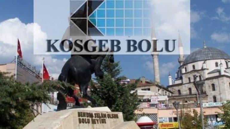 KOSGEB Bolu