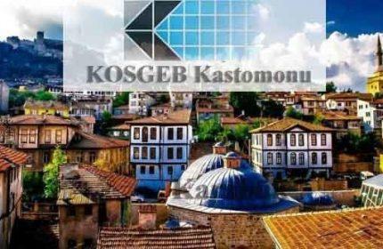 KOSGEB Kastamonu