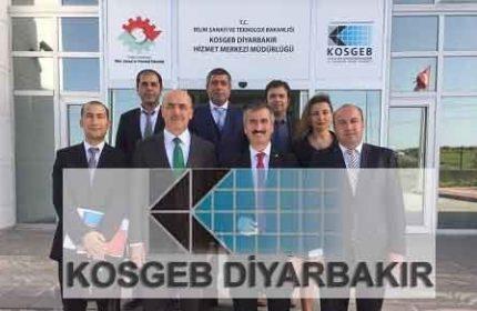 KOSGEB Diyarbakır'da İŞKUR Ortaklığında Eğitim Veriyor!