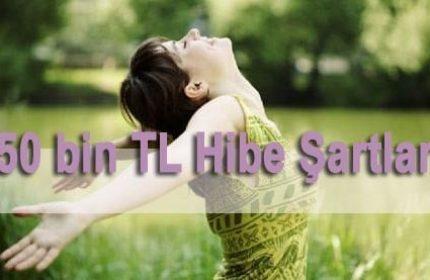 50 Bin TL Hibe Şartları (KİMLER BAŞVURU YAPABİLİR)
