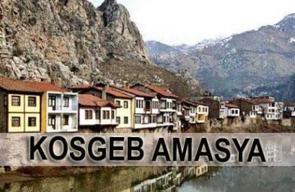 KOSGEB Amasya
