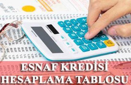 Esnaf Kefalet Kredi Hesaplama Tablosu (2020 EN GÜNCEL)