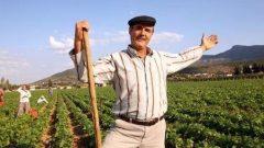 KOSGEB çiftçi desteği