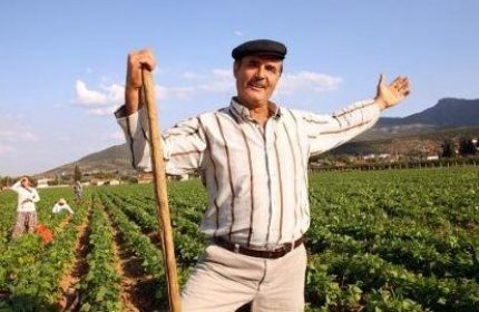 KOSGEB Çiftçi Desteği Nasıl Alınır? (Hayvancılık ve Tarım)