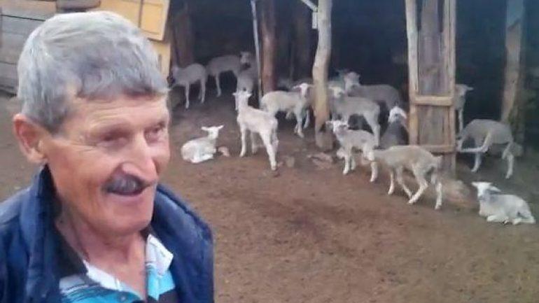 Ziraat bankası Küçükbaş hayvancılık kredisi tam 5.000.000 TL !