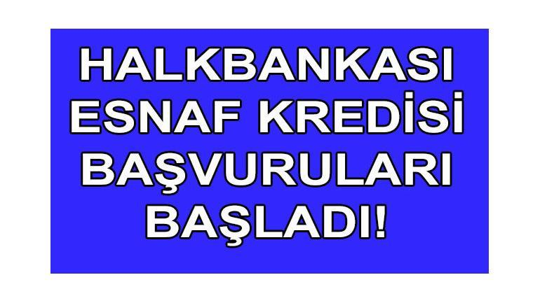 Halkbank Esnaf Kredisi 2019 Başvuruları 200 Bin TL Başladı !