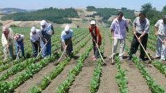 Çiftçilere özel konut kredisi veren bankalar