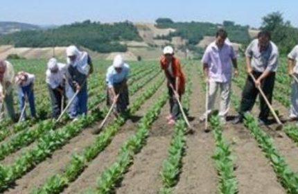 Çiftçilere Özel Konut Kredisi Veren Bankalar Hangisi? (2 Banka Teklifi)