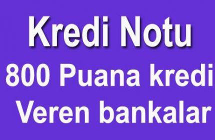 800 900 Puana Kredi Veren Bankalar (Kesin Onaylı)