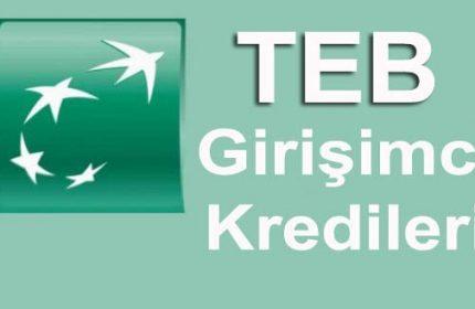 TEB Girişimci Kredileri (Teminat Mektubu, Kadın Destekleri)