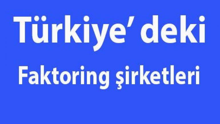 Türkiye deki faktoring şirketleri