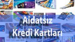3 Bankaya Ait Aidatsız Kredi Kartları Hangileridir ?