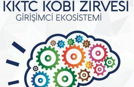 KKTC Hibe Programları Girişimcilere 100.000 TL Kredi Veriyor!
