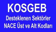 KOSGEB Desteklenen Sektörler 2019 NACE Kodları