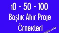 10 20 50 Başlık Süt İneği Ahır Proje Örneği Maliyeti