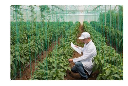Ziraat bankası bitkisel üretim konularına ait kredi faiz oranları