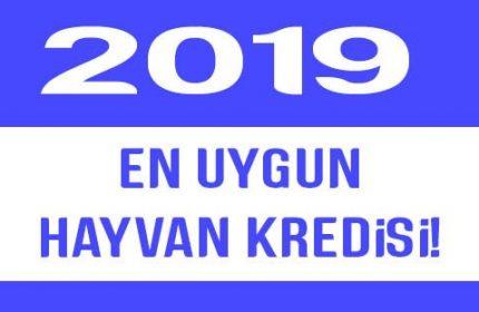 2019 'da En uygun Hayvan Kredisi Veren 5 Banka !