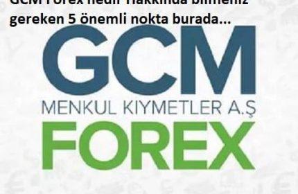 viskas apie gcm forex