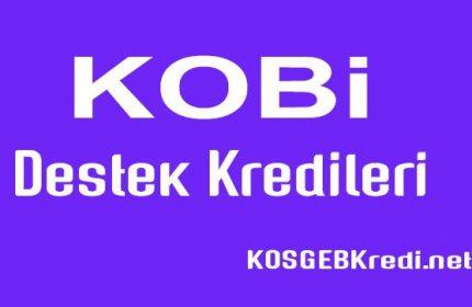 KOBİ Destek Kredisi 2019