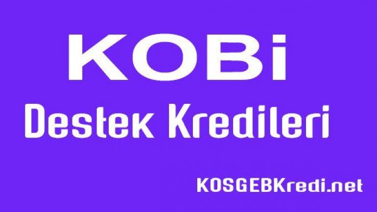 KOBİ Destek Kredisi 2019 Başvuruları 500.000 TL Başladı