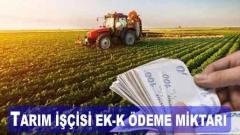 Tarım Sigortası Ek-5 Ödeme Miktarı 2021'de Ne Kadar?