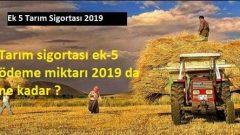 Tarım sigortası ek-5 ödeme miktarı 2019 da ne kadar ?