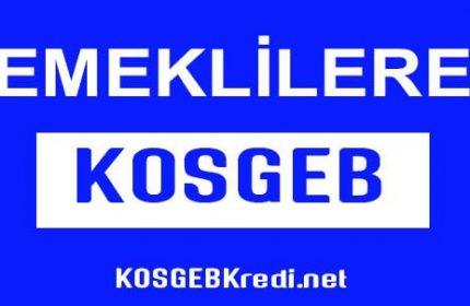 Emekliler KOSGEB 'den Yararlanabilir Mi? 5 Adımda Devlet Desteği!