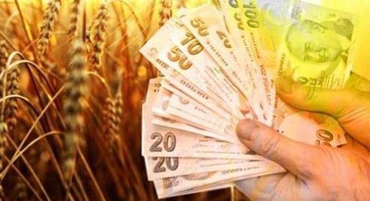 Kredi Notu Değerinin Hayvan Kredilerinde Çiftçimiz İçin Önemi