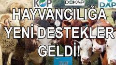 2019-2023 DAP-GAP-KOP-DOKAP Hibe destekleri uzatıldı