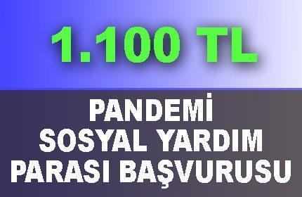 3 Faz 1100 TL Pandemi Sosyal Destek Başvurusu (Ne Zaman, Kimlere Verilecek)